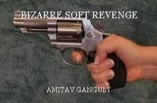BIZARRE SOFT REVENGE