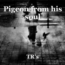 Pigeon from his soul