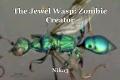 The Jewel Wasp: Zombie Creator