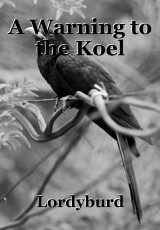 A Warning to the Koel