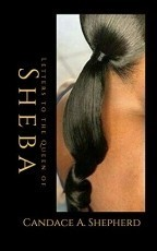 Letters to the Queen of Sheba