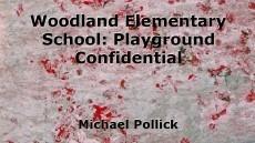 Woodland Elementary School: Playground Confidential