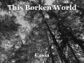 This Borken World