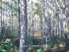 Altar in the Forest