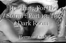 Reaching For The Storm : Part 13, The Dark Room