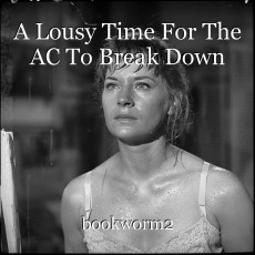A Lousy Time For The AC To Break Down