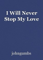 I Will Never Stop My Love