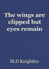 The wings are clipped but eyes remain