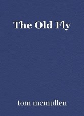 The Old Fly