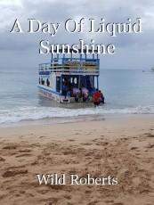 A Day Of Liquid Sunshine