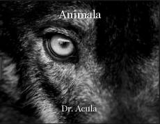Animala