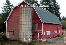 Corn on the Farm