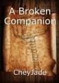 A Broken Companion