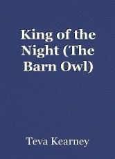 King of the Night (The Barn Owl)