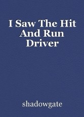 I Saw The Hit And Run Driver