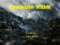 Revolution Within