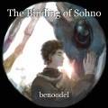 The Binding of Sohno