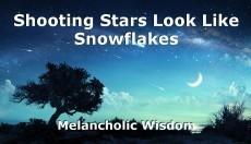 Shooting Stars Look Like Snowflakes