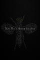 The Fly's Heartache