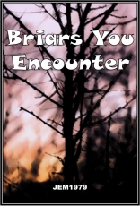 Briars You Encounter