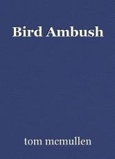 Bird Ambush