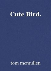 Cute Bird.