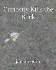 Curiosity Kills the Buck