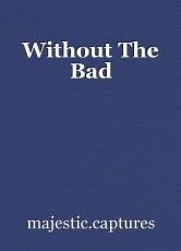 Without The Bad