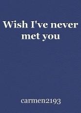 Wish I've never met you