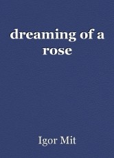 dreaming of a rose