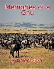 Memories of a Gnu