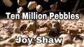 Ten Million Pebbles