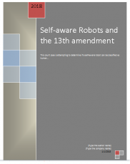 Self aware robots and the 13th amendment