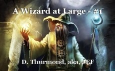 A Wizard at Large - #1