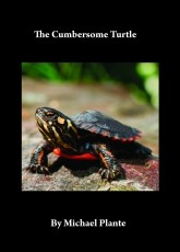 The Cumbersome Turtle