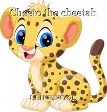 Cheeto the cheetah