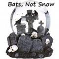 Bats, Not Snow