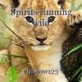 Spirits running wild