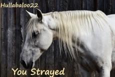You Strayed