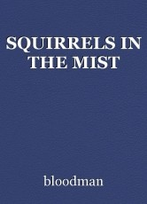 SQUIRRELS IN THE MIST
