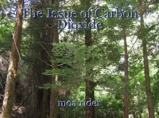 The Issue of Carbon Dioxide