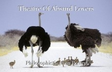 Theatre Of Absurd Lovers