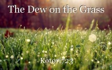 The Dew on the Grass