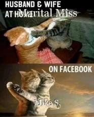 Marital Miss
