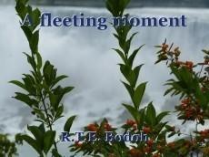 A fleeting moment