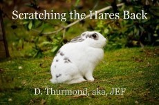 Scratching the Hares Back