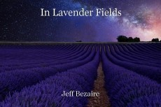In Lavender Fields