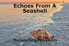 Echoes From A Seashell