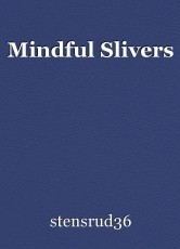 Mindful Slivers