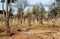 Ngarash Primary School